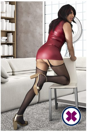 Relax into a world of bliss with TS DianaXXL, one of the massage providers in Virtual