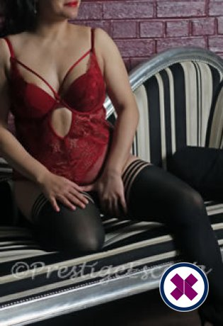 Meet the beautiful Sasha in Newcastle  with just one phone call