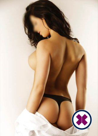 Lucy is a sexy Dutch Escort in Amsterdam