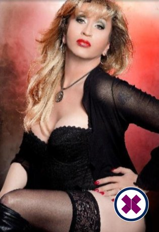 Relax into a world of bliss with TS Roxy Massage, one of the massage providers in Berlin