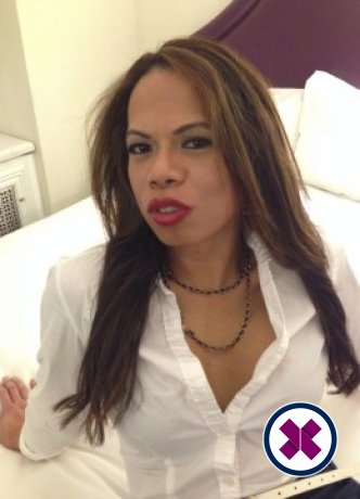 Amanda TS is a super sexy Thai Escort in Westminster