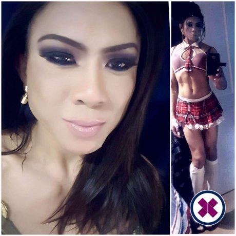 Johanna TS ist eine super sexy Thai Escort in Westminster