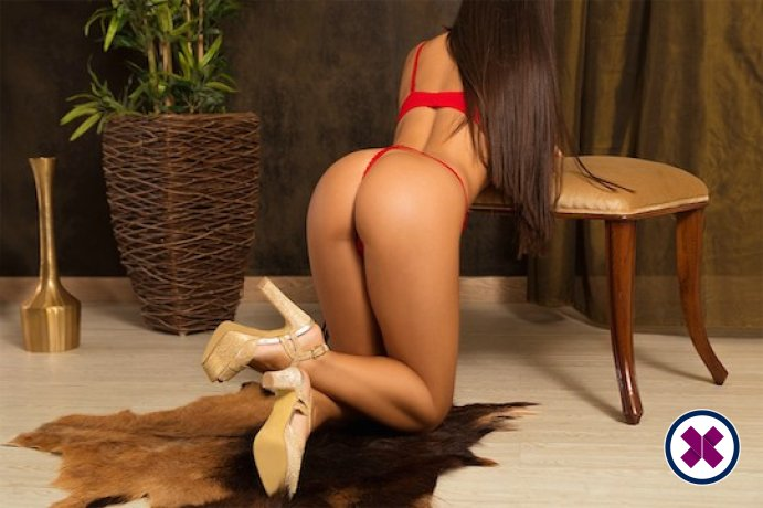 Tina is a sexy British Escort in Brighton
