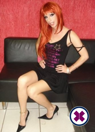 Bella Stella Massage TV is one of the much loved massage providers in Newcastle. Ring up and make a booking right away.