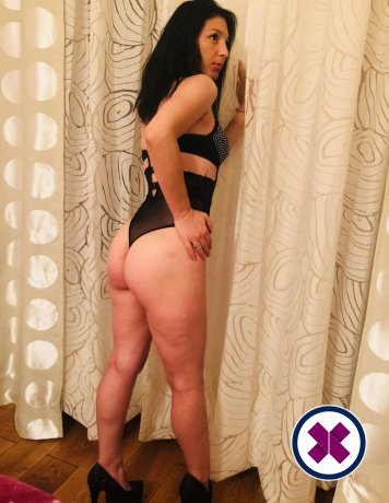 Alina is a high class German Escort Berlin