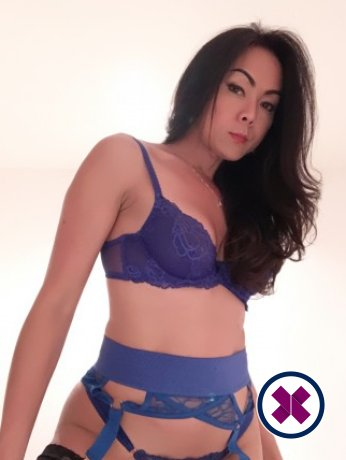 Book a meeting with TS Nara in London today