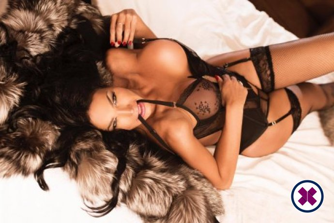 TS Luana's Happy Massage is one of the best massage providers in Westminster. Book a meeting today